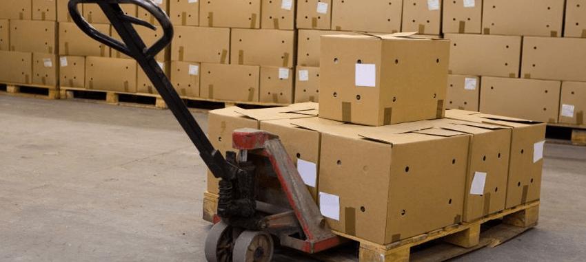 Choosing The Best Manual Pallet Truck